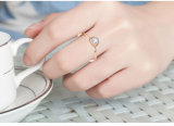 Diamonds를 가진 형식 Women Jewelry Stainless Steel Ring ((hdx1066)
