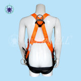 Body pieno Harness, Safety Harness, Seat Belt, Safety Belt, Webbing con Fixed a tre punti Mode (EW0119BH)