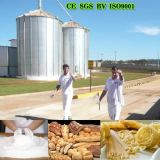 アフリカMarket Quality 36t Wheat Flour Machine