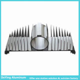 Industrie-Aluminiumfabrik-Aluminiumstrangpresßling Soem-Form