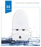Weidansi en céramique lavent vers le bas la toilette d'une seule pièce de courroie (WDS-T6109)