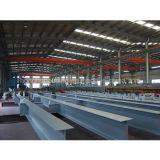 Il gruppo di lavoro d'acciaio chiaro ad alta resistenza edificio di Strcture si è liberato del magazzino prefabbricato della Camera