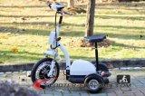 De klassieke Autoped van de Ruiter van 3 Wiel Gemakkelijke Elektrische Mini met de Autoped Es5013 van de Zetel van het Kind en van Handbar van Kinderen op Verkoop