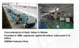 maquinaria da estaca do laser do CNC do aço 1000W inoxidável/aço de carbono/folha de metal