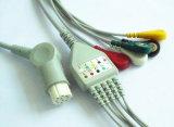 Câble de S&W 10pin 3&5 Snap&Clip ECG