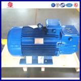 motor trifásico do giro do motor de indução 110V para o guindaste de torre