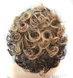 여자 니스 짧은 자연적인 작은 양 가발 두 배 색깔 기온변화도 합성 머리 가발