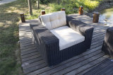 Grand jeu triplace en osier rond du sofa 4PCS de patio
