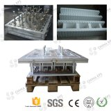 La Chine Best ENV Styrofoam Mould Tool Design pour Styrofoam