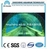 Acuario de acrílico modificado para requisitos particulares del túnel