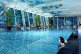 Het Mozaïek van het Glas van het iridium voor Zwembad/de Muur van de Badkamers/van de Keuken en Tegel 20X20mm van de Vloer