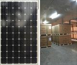 Ebst-M260 mono modulo solare verde di energia 260W