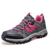 Спорты Shoes Trekking Boots для Women Hiking (AK8907A)