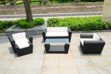 Mobilia esterna del sofà del rattan del giardino (SC-B1004)