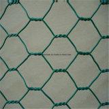 電流を通された六角形ワイヤーMesh/PVC上塗を施してある六角形の金網