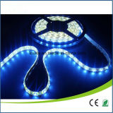 120Leds IP65 impermeable SMD 3014 LED de luz de tira