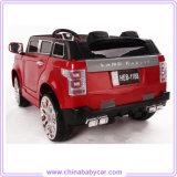 Внешний вид Land Rover ягнится электрическая езда на автомобиле