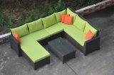 Populäres neues Entwurfs-Kombination PET Rattan-Sofa mit Garten-Sofa