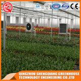 Wachsen Landwirtschafts-multi Überspannung PC Blatt-grünes Haus/Zelt für Verkauf