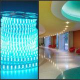 Multi-Color R / G / B / Y / W / Ww Variável 5050 LED Strip Multi-Funtions para iluminação interior / exterior