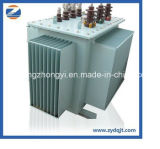 Toroidal Transformator met van Ce en ISO- Certificaat