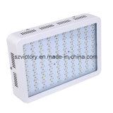 高性能屋内LEDはランプを育てる、1200Wアポロ16 LEDはHydroponicsおよびGreenshouseのために軽く育つ
