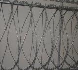 Rede de arame de fita raspada quente (DPCS02)