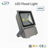 100W 정원 빛을%s 고아한 시리즈 LED 플러드 빛
