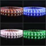 5050 RGB Enige Color/60LEDs R/G/B/Y/W/Ww 100-240V met HOOFDControlemechanisme