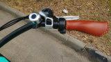26*4.0 بوصة [48ف] [500و] متأخّر كهربائيّة درّاجة نمو جبل [إ] درّاجة لأنّ كاملة عمليّة بيع دوّاسة محرّك درّاجة كهربائيّة