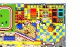 Het binnen Type van Speelplaats en de Materiële Speelplaats van Acciaio E Plastica