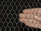 Плетение мелкоячеистой сетки/PVC покрынная гальванизированная шестиугольная ячеистая сеть/сетка мелкоячеистой сетки самого низкого цены