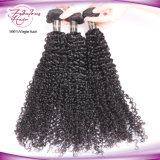 Malaysian 머리는 사람의 모발 비꼬인 곱슬머리 길쌈을 묶는다