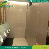Cabine imperméable à l'eau décorative de toilette de douche de résine phénolique de salle de bains