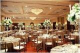 Cadeira elegante do hotel e do restaurante da alta qualidade para vendas