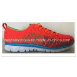 Цветастые ботинки спорта с верхушкой Flyknit