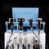 B0134 Wholesale das Ultraschall-HF-Vakuumhohlraumbildung-Maschinen-Haifisch-Vakuum, das Maschine für Verkauf bildet