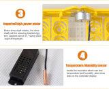 2016の最も新しい自動小型ウズラの卵の定温器(264羽のウズラの定温器)