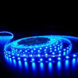 유연하가 120LEDs/M에 의하여 5m 씩 방수 처리한다 2835의 LED 지구 빛을 구른다