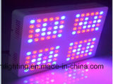 O diodo emissor de luz cheio impermeável vertical profissional do espetro 180W do UL ETL IP65 cresce a luz