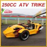 250cc direzione Trike con Windshiled ed il diruttore posteriore