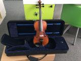 Violino 4/4 dell'oggetto d'antiquariato del raso di rivestimento di lucentezza con la cassa del violino