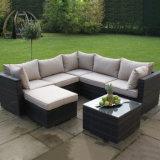 Ausgezeichnete Qualitätsfreizeit konzipiert Rattan-im Freiengarten-Möbel-Sofa-Set