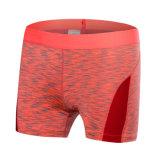 Ropa respirable Legging del desgaste de la gimnasia de los cortocircuitos de la compresión de las mujeres de Nn0113 Neleus
