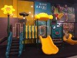 Dierlijke Plastic OpenluchtSpeelplaats LLDPE voor de Spelen van Kinderen/de OpenluchtApparatuur van /LLDPE van de Apparatuur van de Speelplaats voor Pretparken