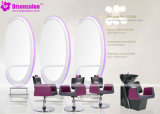 شعبيّة [هيغقوليتي] صالون أثاث لازم مرآة حلّاق صالون كرسي تثبيت ([ب2028])