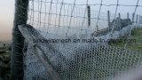 Het Opleveren van het Gevogelte van het Kippegaas van Sailin