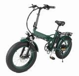LCD Ys F0720f를 가진 재력 후방 모터 뚱뚱한 타이어 전기 자전거