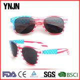 Óculos de sol rápidos da bandeira americana do fabricante de China da entrega