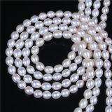 ブレスレットのネックレスを作るためのAAA 8-9mmの米の形の淡水の真珠の緩いビード